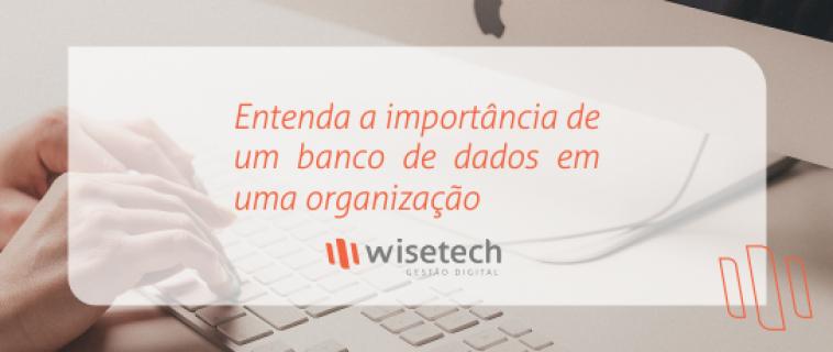 Entenda a importância de um banco de dados em uma organização